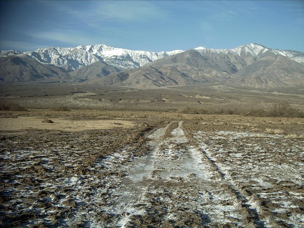 January 28 - February 4, 2008: Death Valley, California